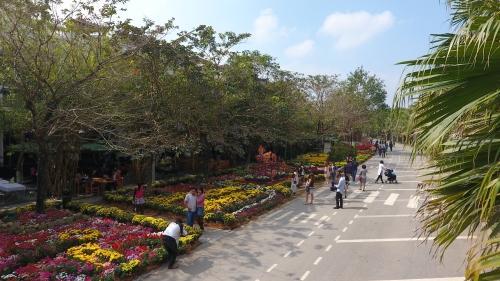 công viên mùa thu